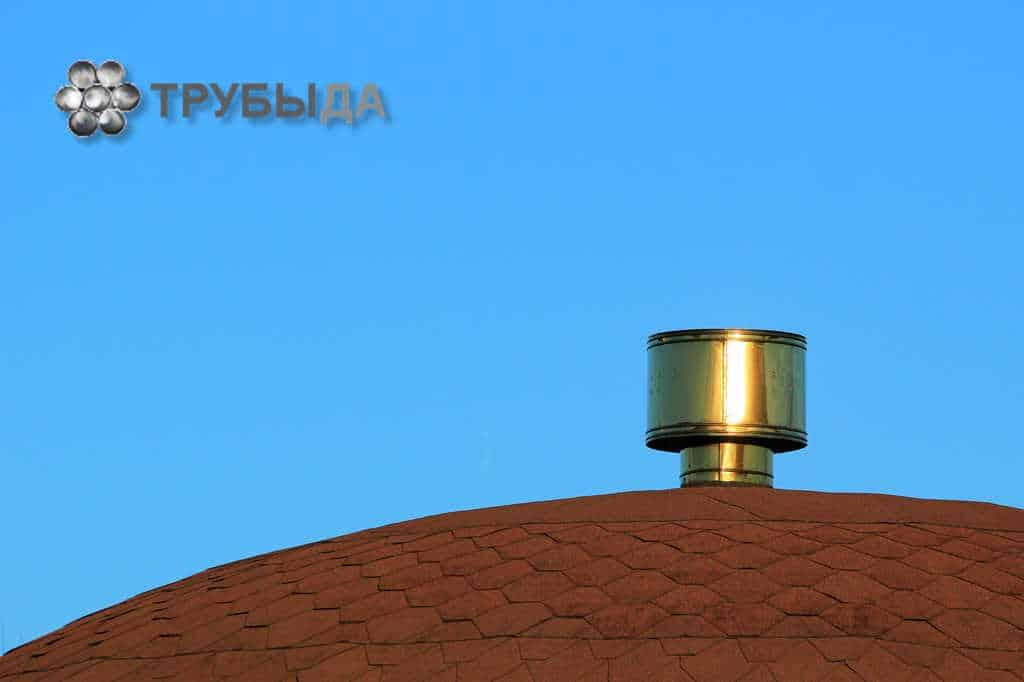 Срок службы грибка на крыше